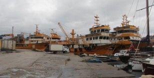 Sinoplu balıkçılar hamsi ağından istavrit ağına geçiyor