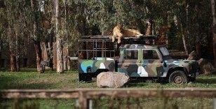 İzmir Doğal Yaşam Parkı yeni yüzüyle salgın sonrasına hazır
