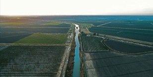 Tatlı su miktarının yüzde 70'i tarımsal sulamada kullanılıyor