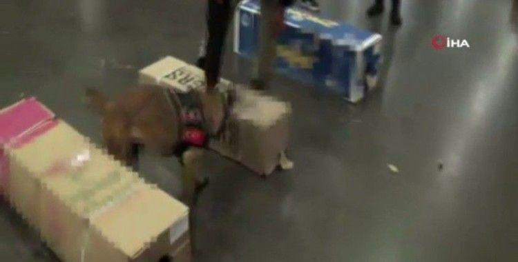 Havalimanında uyuşturucu operasyonu: 24 kilo kokain ele geçirildi