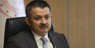 Tarım ve Orman Bakanı Pakdemirli hortumun verdiği zararı incelemek üzere Çeşme'ye gidiyor