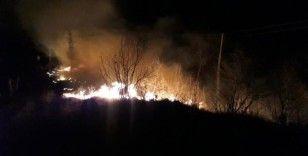 Tokat'taki örtü yangınında 2 hektarlık alan zarar gördü