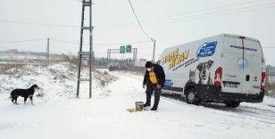 Büyükçekmece yoğun kar yağışına teslim olmadı
