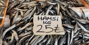 Karadeniz'de çıkan fırtına balık tezgahlarına yansıdı