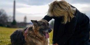 Koronavirüse ve kışa teslim olan ABD'de gündem Biden'ın köpeği