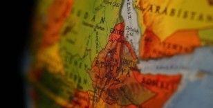 Etiyopya'da akademisyenler, Nil Nehri'nden daha iyi faydalanabilmek amacıyla forum oluşturdu