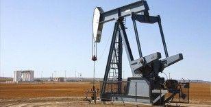 OPEC+ grubunun arz-talep dengesini yönetme kabiliyeti bir kez daha sınanacak