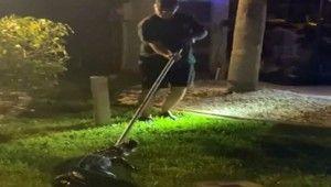 Florida'da evin garajında timsah bulundu