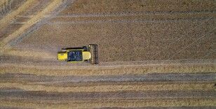 BM Gıda ve Tarım Örgütü: Küresel gıda fiyatları Temmuz 2014'ten beri en yüksek seviyesinde