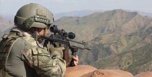 Şırnak ve Siirt'te 1317 personelin katılımıyla 'Eren-12 Güleşli Operasyonu' başladı