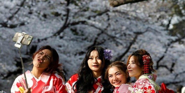 Japon kiraz çiçekleri küresel ısınma yüzünden şaştı: 1200 yıllık kayıtlardaki en erken tarihte açtılar