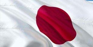 Japonya'dan Hindistan finans kuruluşuna iklim değişikliğine karşı 'yeşil kredi' desteği