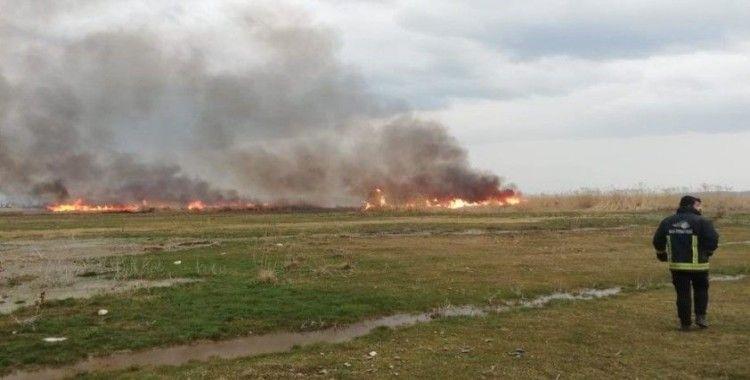 Sazlık alanda korkutan yangın