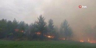 Muğla'daki orman yangınlarını söndürme çalışmaları sürüyor