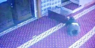 Hırsız, camideki yardım parası kasasına takla attırarak çaldı