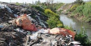 Greenpeace: Türkiye, Avrupa'dan 659 bin 960 ton plastik atık ithal etti