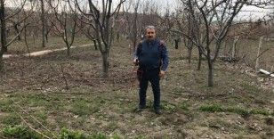 BBP Genel Başkanı Destici ağaç budadı