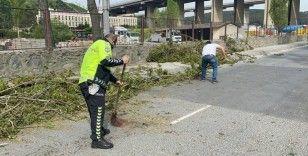 İstanbul'da ağaçlar yola devrildi, polis temizledi