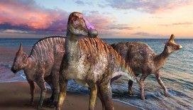 Fosilleşmiş kemikleri 72 milyon yıl önceye dayanan dinozor 'yeni bir tür' olarak kayıtlara geçti