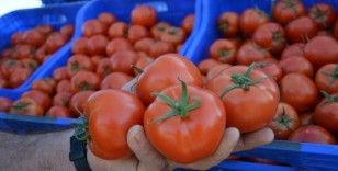 Fiyatı en fazla artan ürün domates oldu