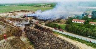 Afyonkarahisar'da biyokütle enerji santralindeki yangında 30 bin ton odun ve tomruk yandı