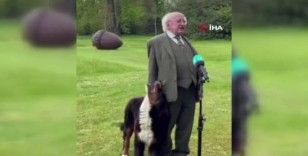İrlanda Cumhurbaşkanı Higgins'in canlı yayında zor anları