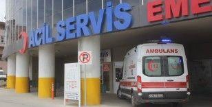 Yaz mevsimiyle birlikte Erzincan'da 7 kişi kene ısırması sonucu hastanelik oldu