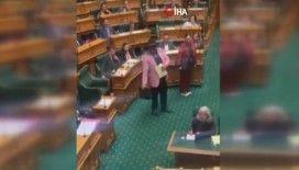 Maorili vekil haka dansı yaptı, parlamento toplantısından atıldı