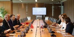 Rusya, uçuşların tekrar başlaması için Türkiye'ye heyet gönderecek