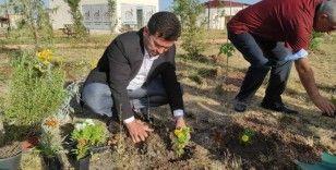 Dargeçit Belediye Başkanı Aksoy fidan dikim çalışmalarını yerinde inceledi