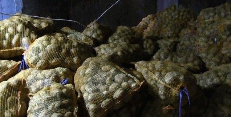 Fiyatı en fazla artan ürün patates
