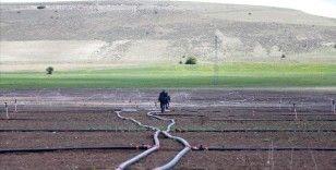 Yıl sonuna kadar 402 su ve sulama yatırımının tamamlanması hedefleniyor