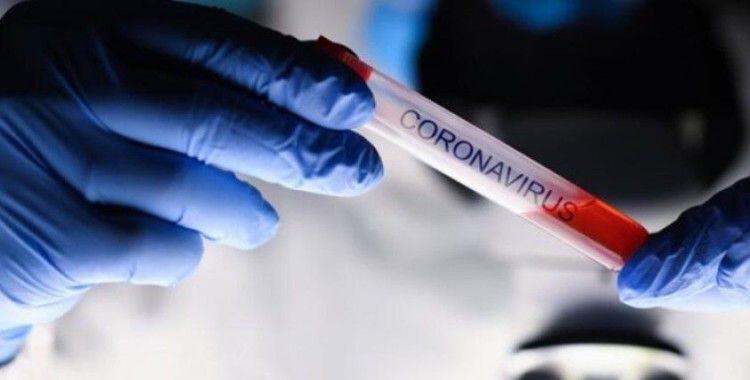 CDC: 'ABD'de 12-17 yaş arası gençlerde Covid-19 kaynaklı hastaneye yatışlarda artış var'