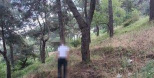Kayıp adam ağaca asılı halde bulundu