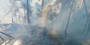 Artvin'de korkutan orman yangını