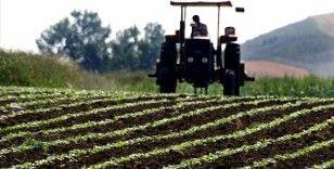 Türkiye artık tohum üreten ve ihraç eden ülke konumuna geldi