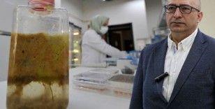 Prof. Dr. Yılmaz: Marmara Denizi'nden toplanan müsilaja talibiz