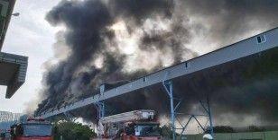 Tayvan'da dünyanın 4'üncü büyük kömürlü santralinde yangın