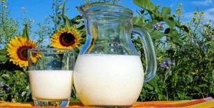 Süt ve süt ürünlerindeki ihracat bu yıl Çin etkisiyle arttı