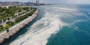 Kartal Sahili'ndeki müsilaj yoğunluğu havadan görüntülendi