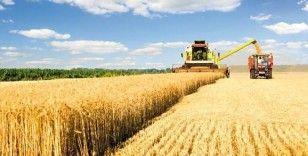 Tarım-ÜFE aylık yüzde 0,43 azaldı