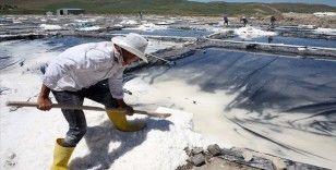 Muş'ta kaynak sularından elde edilen tuz yurdun dört bir yanına gönderiliyor