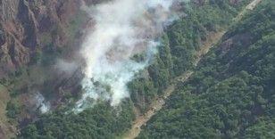 Tunceli'de ormanlık alanlardaki yangınlar söndürüldü