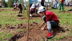 Ağaçlandırma seferberliği tüm bölgelerde devam ediyor