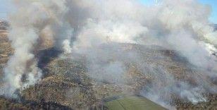 Güney Kıbrıs'ta korkutan yangın