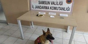 Samsun'a uyuşturucu sevkiyatı jandarmaya takıldı