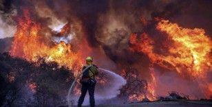 California'yı kasıp kavuran sıcaklar acil durum ilan ettirdi