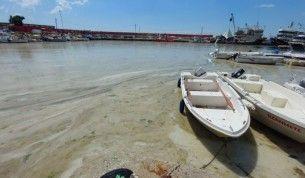 Bu görüntüler Tekirdağ'dan, denizde salya çölü