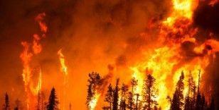 Hatay'da orman yangınına müdahale sürüyor