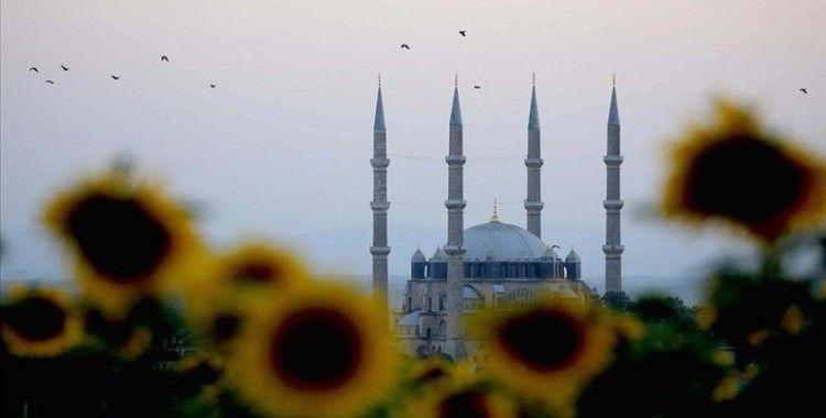 Ayçiçeklerinin oluşturduğu sarı şölen Edirne'yi dev bir yağlı boya tablosuna dönüştürdü